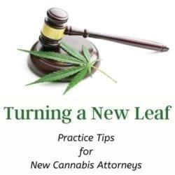 New Cannabis Attorneys